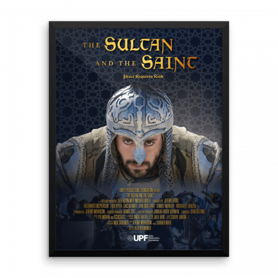 sultan movie poster alternate 18 x 24 framed